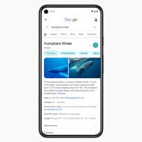 Google провел редизайн выдачи в мобильной версии поисковика